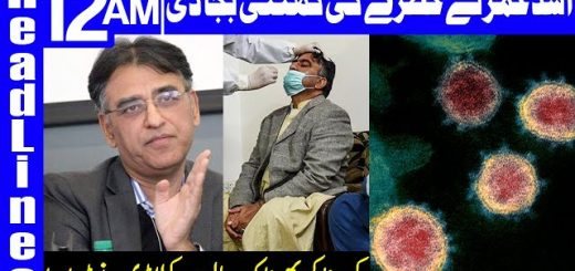 Coronavirus Situation Worsening In Pakistan Day By Day | Headlines 12 AM | 27 November 2020 | HA1L